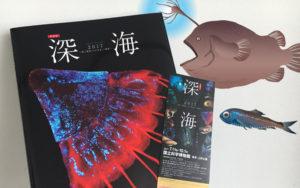 特別展「深海 2017」図録イラスト制作実績