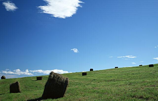 夏の北海道イメージ