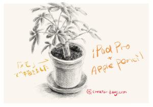 iPad Pro / Apple Pencil メモで鉛筆デッサン